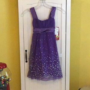 Girls Ruby Rox purple dress NWT size 7